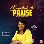 MUSIC + LYRICS: Created to Praise by Tochi Praise